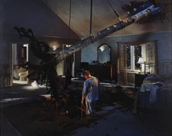 Gregory Crewdson, Bedroom Tree (2001-2002)