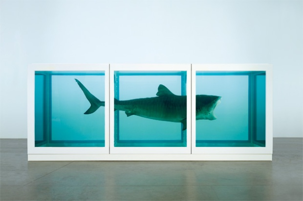 Damien Hirst - The Physical Impossibility of Death in the Mind of Someone Living (1991)