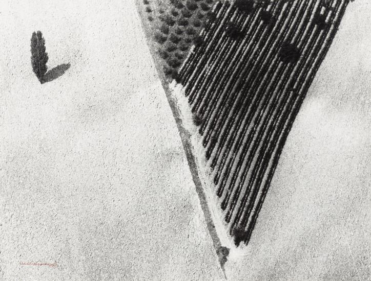 mario-giacomelli-dalla-serie-presa-di-coscienza-della-natura-1977-2000